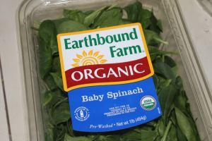 organic-spinach
